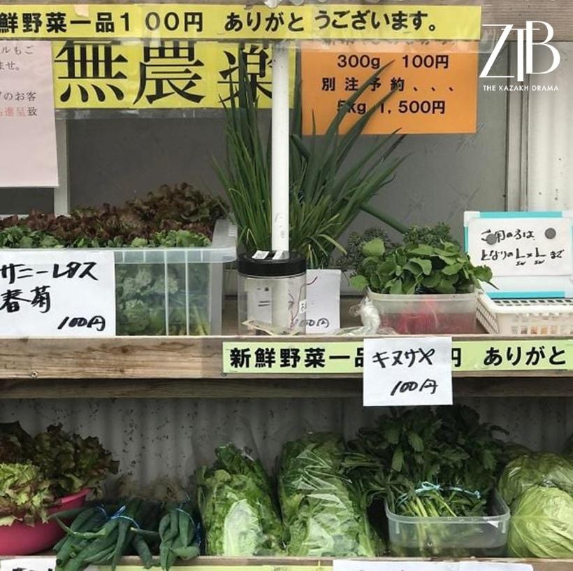 15 привычных для Японии вещей, которых так не хватает всему миру