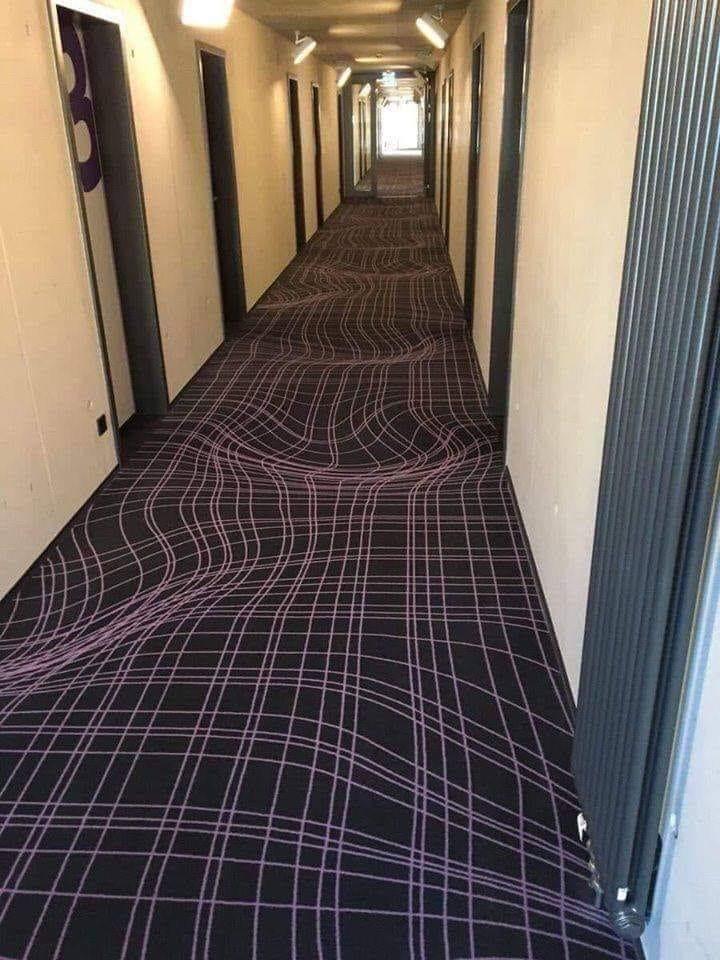 99297665 113148447077271 1324516988659171328 n - Как отучить бегать в гостиничном коридоре